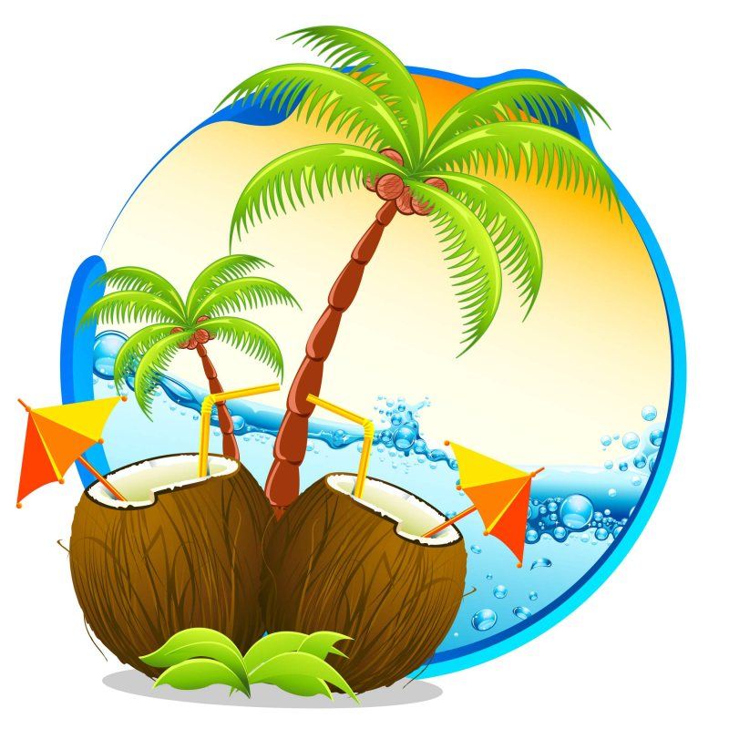 kauai condo vacations logo